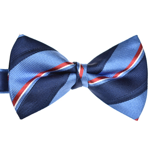 Navy & Blue Striped Silk Bow