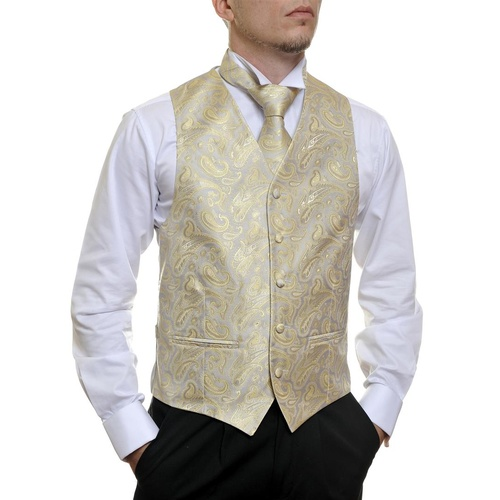 Silver and Gold Paisley C914